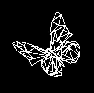 Papillon monacotech blanc