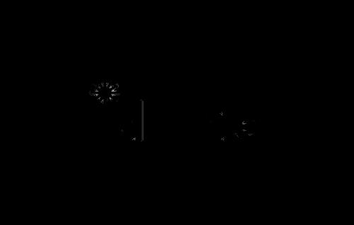 idruide-logo